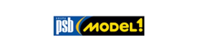 Polskie Składy Budowlane MODEL